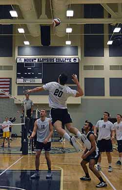 Lions Sweep Sunday NEAC Matches