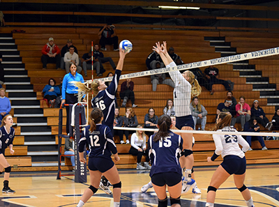 Lady Lions Fall 3-0 to Westminster in ECAC Tourney Opener